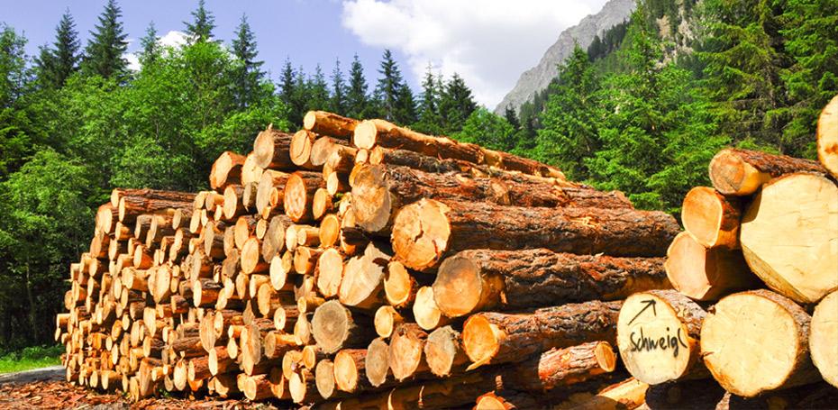 Heizen mit Holz trotz Feinstau
