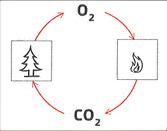 Heizung Formel für Holz