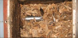 Förderschnecke für die Holzschnitzel