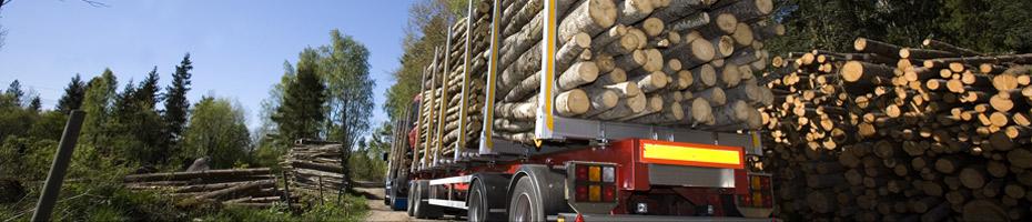 Holzschnitzel haben wir verschiedene Transportmöglichkeiten