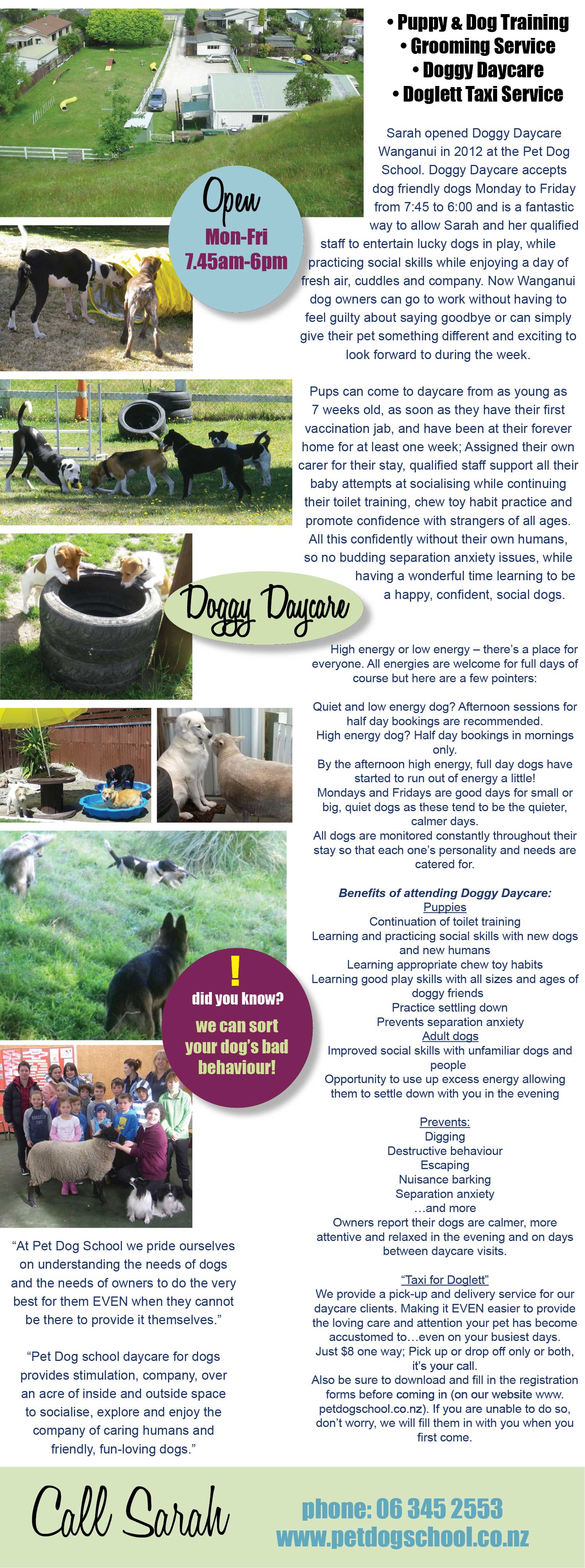 Pet Dog School, Wanganui. Dog Training, Puppy Training, Grooming, dog groomer, dog daycare • Puppy & Dog Training