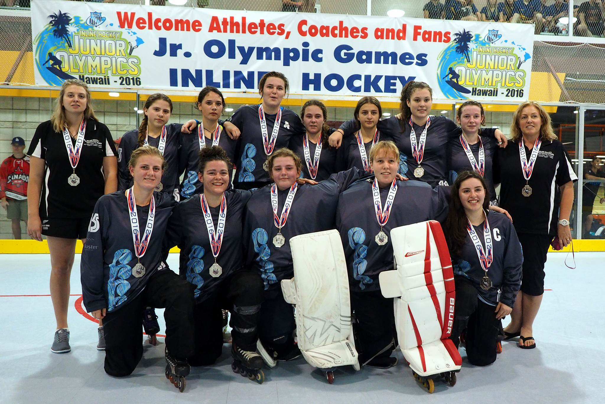 an overview of hockey history rules and great players How to play field hockey  everything helps to become a great field hockey player for help,  it is against the rules to use the round side of the stick.