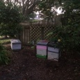 New Bee Hives for winter