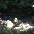 A stream running alongside the track of the Trig walk - crystal clear