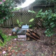 The remains of our 3 hives after the wasps have attacked