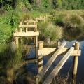 Foundations for boardwalk over pond