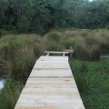 Building boardwalk with engraved planks