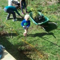 Planting03
