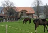 Wohnbauten Bern - Bauernhaus Hostetter Schwarzenburg