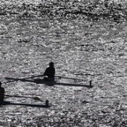 10km Row of Whanganui River:  Second place went to AWRC's Under 16 coxed four of  WHS students; Zeah Brewer, Mikayla Manville, Niamh Murphy, Ella Dudley & cox Campbell Monk, Chronicle 14/11/17.