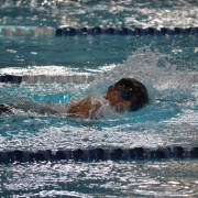 WHS Swimming Champs, 15/2/18.