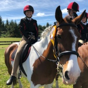 Aliesha Waghorn on Starfire; 3rd individually overall in her Category out of 38 riders & 3rd in the pairs with Abbey Peters from St Annes; NI Showhunter Team Champs in Foxton 28-30 September 2018.