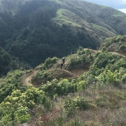 Mr Watkins OUT2 class mountain biking up at K-Loop track Palmerston North, 11/6/18.