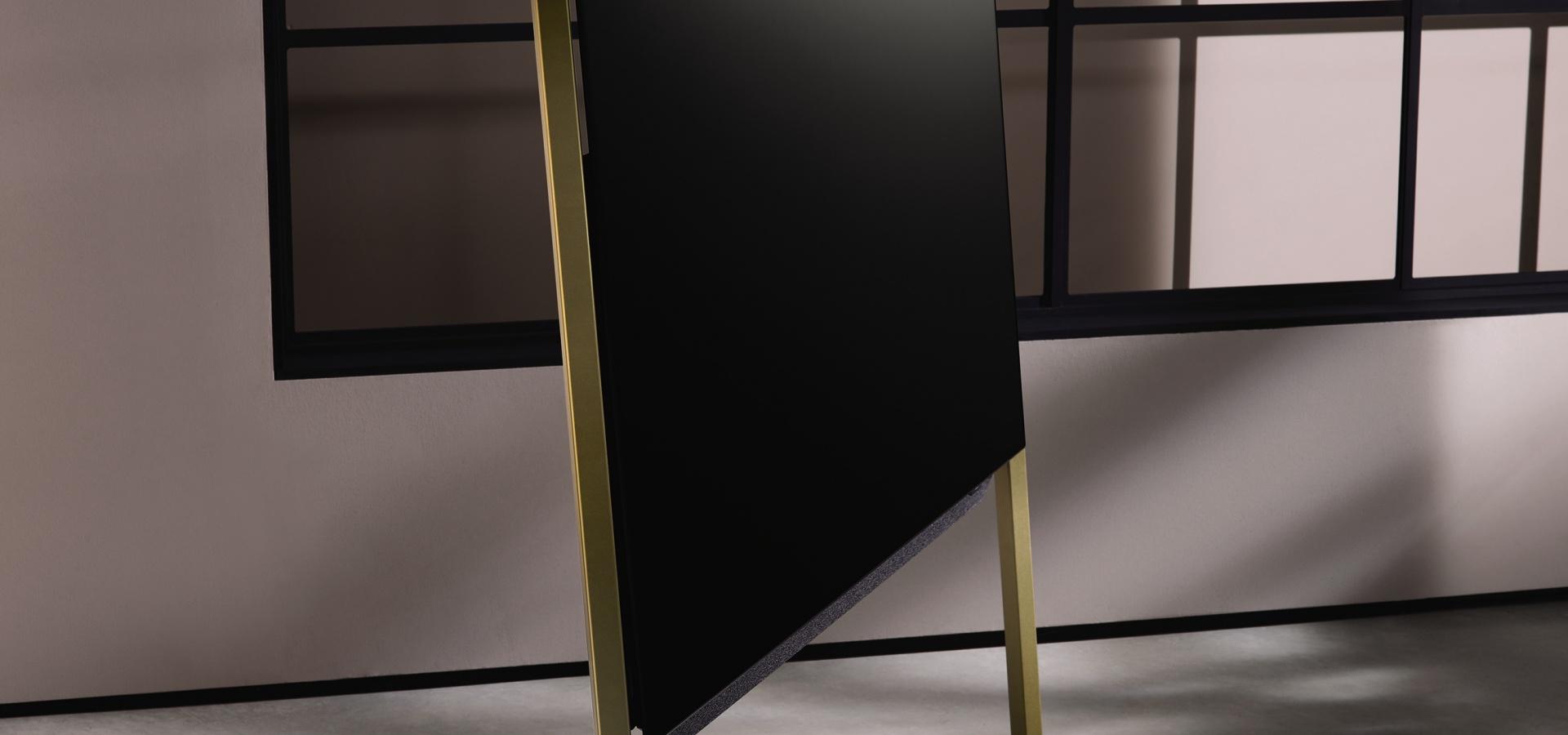 Loewe Bild 9 auf Standfuss