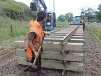 One of the track gangers taps rail into place.