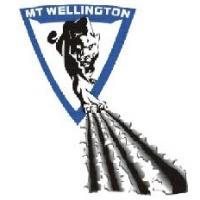 Mt Wellington Panthers