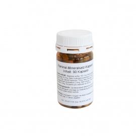 Raminal Mineralsalz-Kapseln 90 Stk.