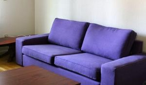 Freshly dyed purple sofa