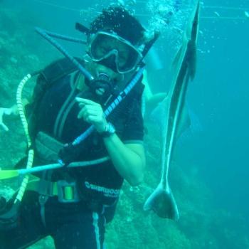 Diving Fiji