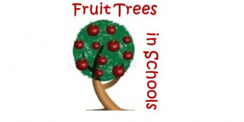Fruit Trees in Schools