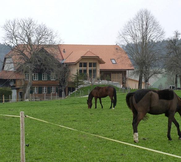 Wohnbauten Bern - Bauernhaus Hostetter Schwarzenburg - Vifian Partner