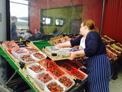 Briar Rose Harrison restalking the vast range of strawberry bowls during the 2014 Christmas period!