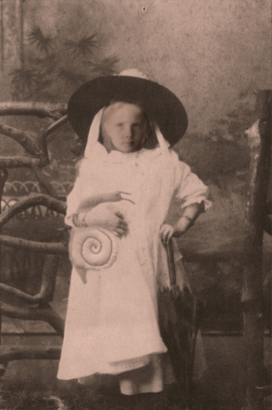 The Story of Molly Shelton at the Whanganui Museum