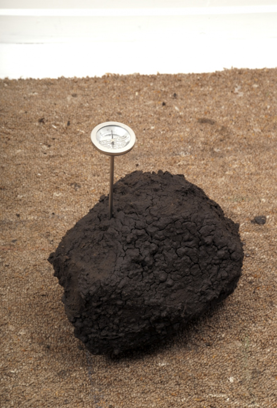 Soil with Planting Thermometer