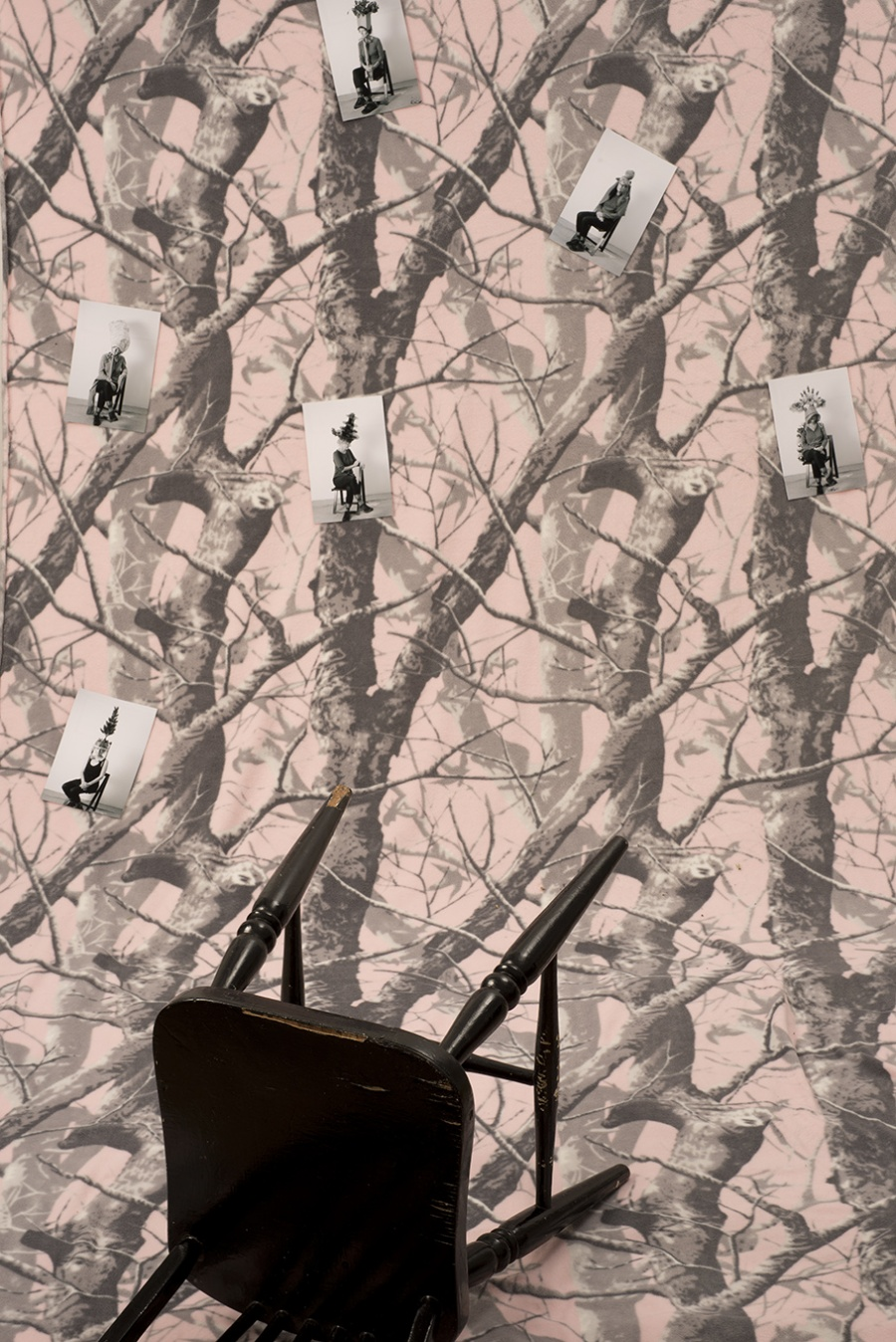Black Chair in a Pink Forest