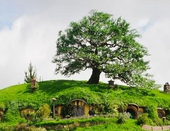 Hobbiton Movie Set is only an hours drive away