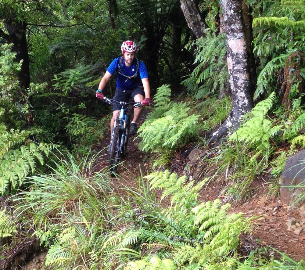Maintain biking in the Kaimai Mamaku National Park
