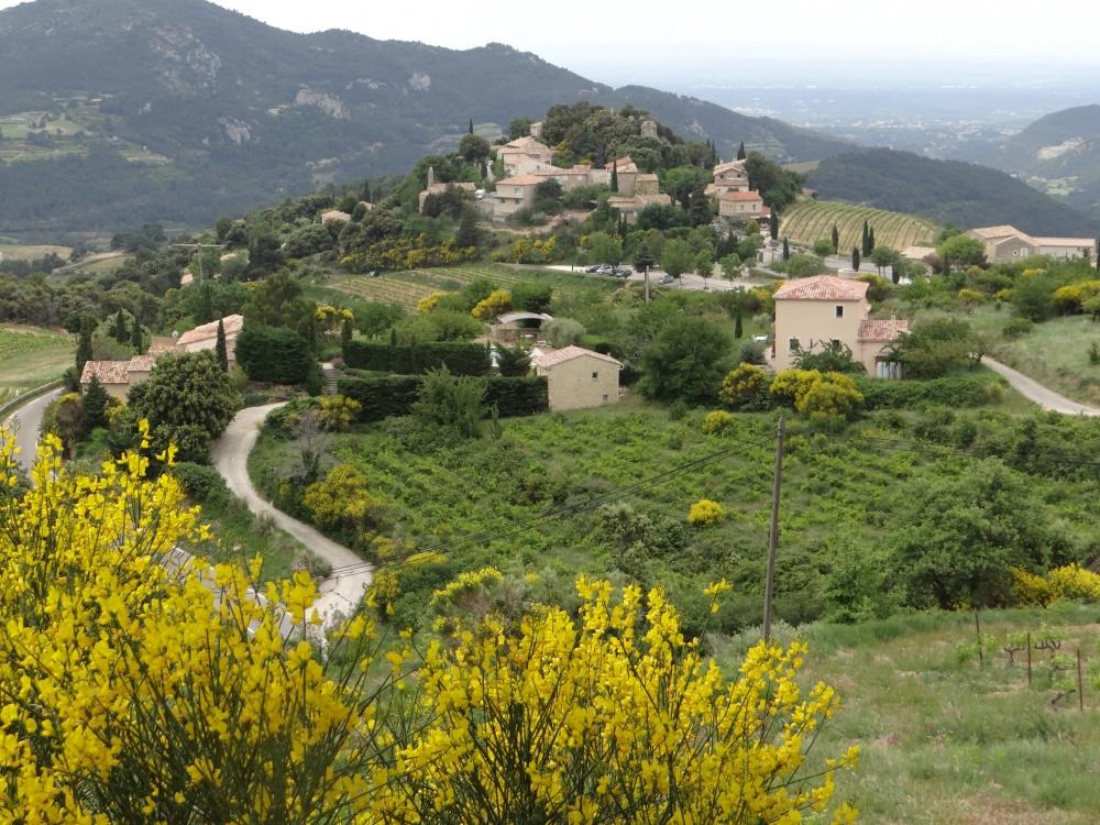 Village of Suzette